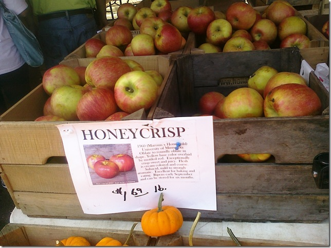honeycrisp 9.11