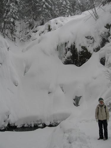 Wodospad Kamieńczyka zimą