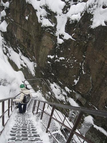 Zejście do Wąwozu Kamieńczyka