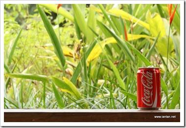 Coke-N-Nature