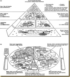food-guide-pyramid.1