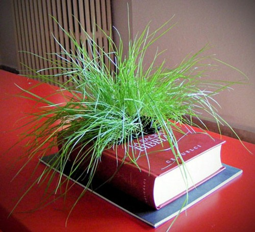 Creative-Planters-Design-from-Recycled-Books-l-Innovative-Planters