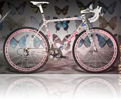 expensive-bicycle-butterfly-hirst
