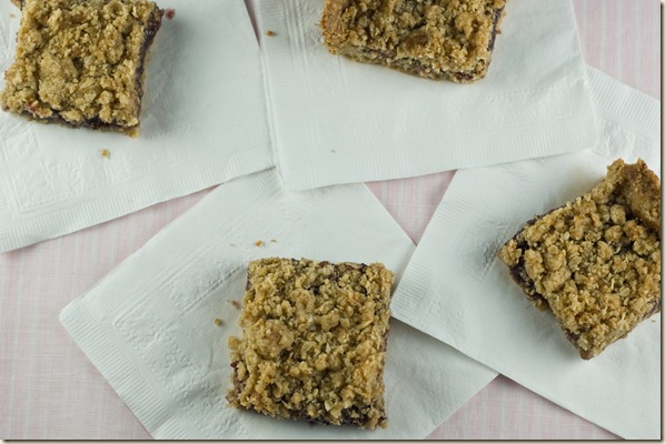 rapberry oatmeal squares