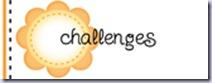 challengegallerysun