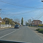 FaeuriCeata_Afara_Masina (4).jpg
