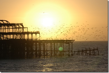Brighton 016