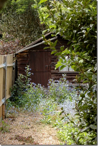garden 088
