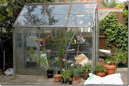 garden 105
