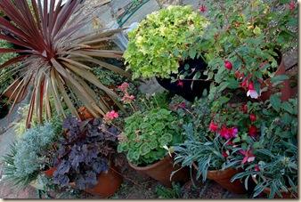 garden 078b