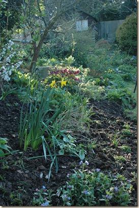 garden a day 145
