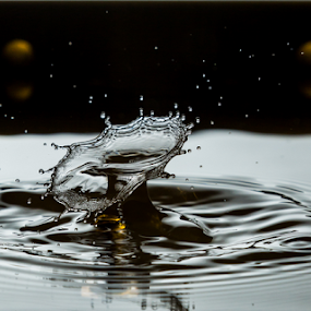 Water Drop Crash by MIGUEL CORREA - Abstract Water Drops & Splashes ( water, splash, drop, crash )