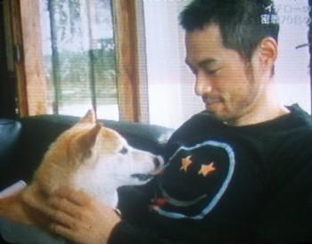 柴犬というのがいい。サムライのイチローには柴犬でなければ似合わない。体が小さく、一見メス犬かなとも思ったが、オス犬である。わが家の愛犬(柴犬・メス)との間に