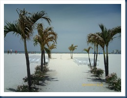 PTDC0184-Beach