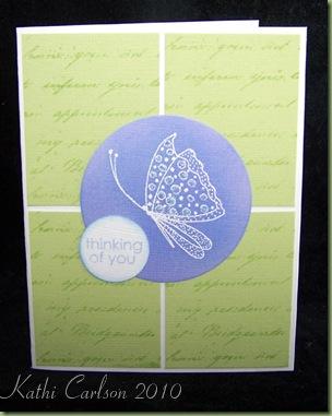 Gossamer Butterfly_Feb 2010
