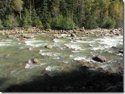 Animas #2 River