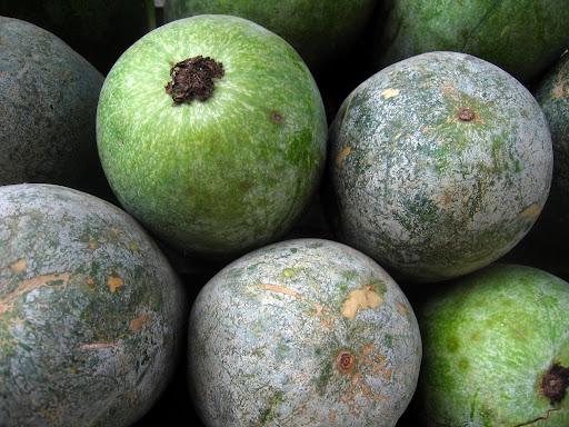 How to take away Drishti using Ash Gourd?