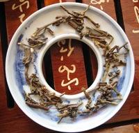tea stems circle 2