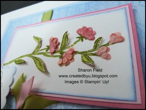 UDI28b2_SharonField