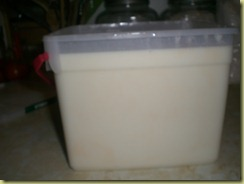 yogurt making 024