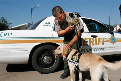 "Washington County K-9 Officer ""Joe"" and a handler (Courtesy Photo)"