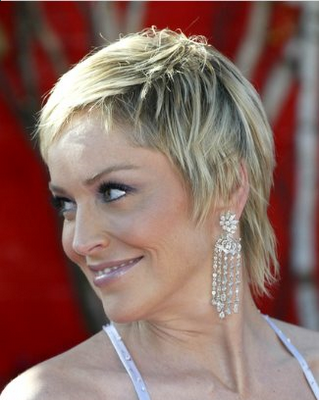 Trendy Short Sedu Hairstyle 2010