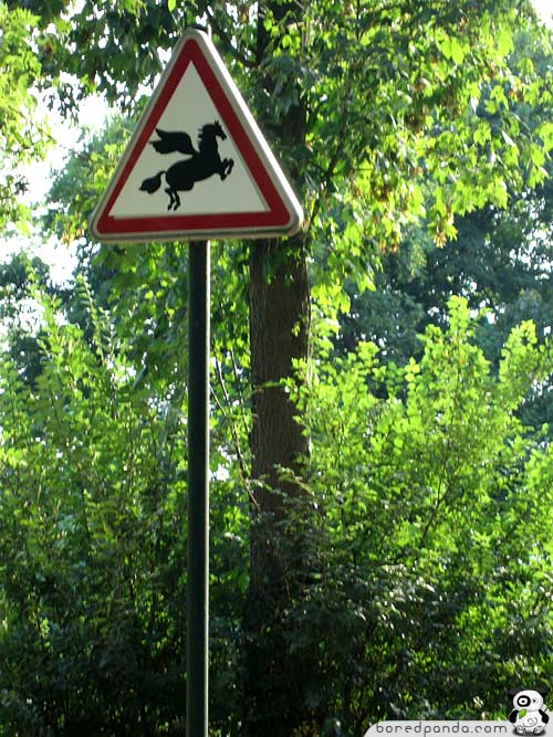 Funniest Signs Around The World Bored Panda - 34 ridiculous signs will make question humanity