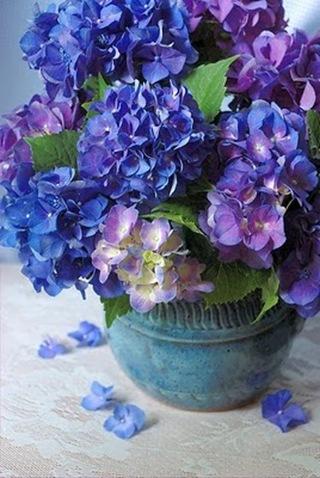 hydrangea_arrangement