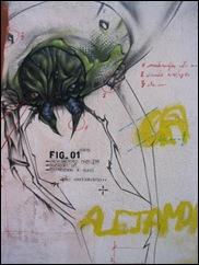 Escarabajo 01