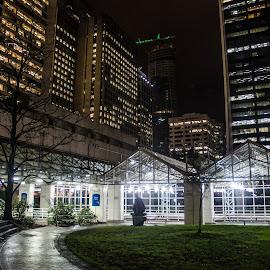 Burrard Street Station by Cory Bohnenkamp - Transportation Trains ( station, night, vancouver, transit, skytrain, city )