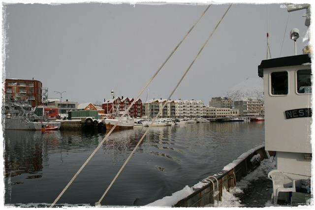 2011.03.27 026-01