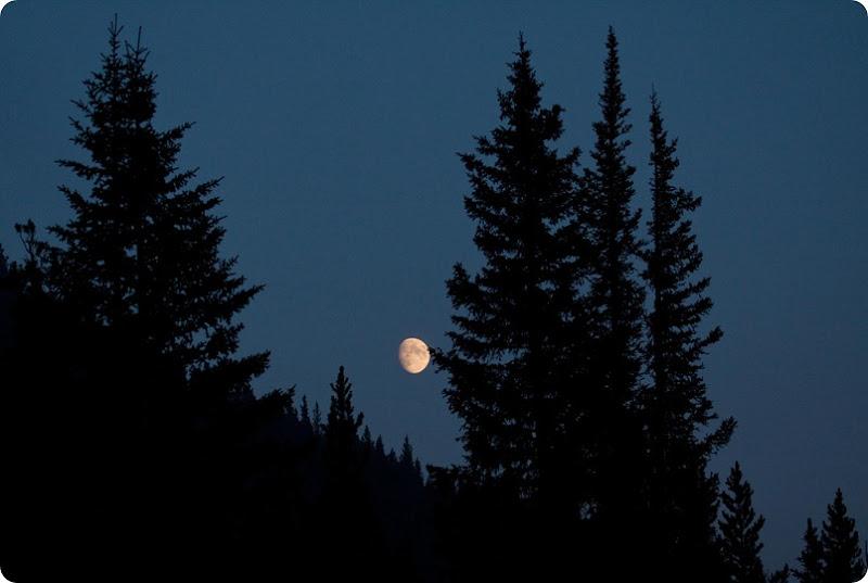Etherington Moon-1