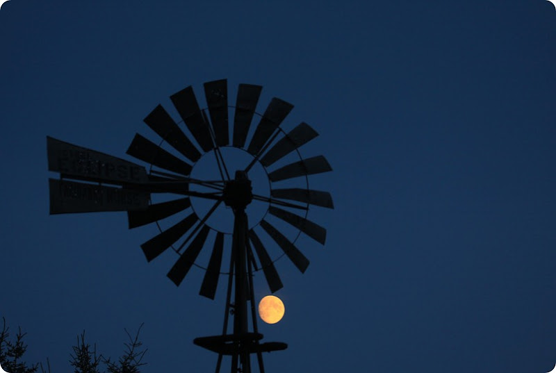 Windmill and the Moon-1