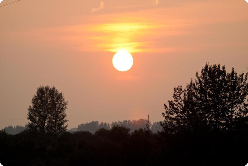 Red Sun-1