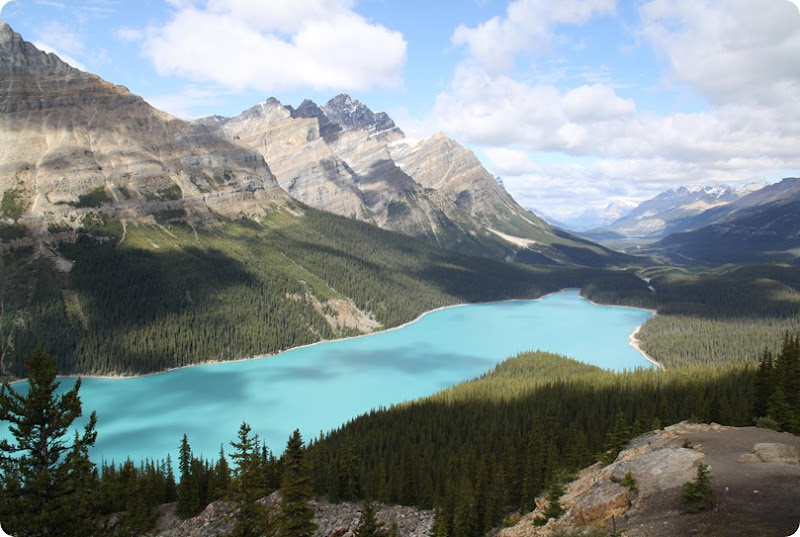 IP - Peyto Lake-1