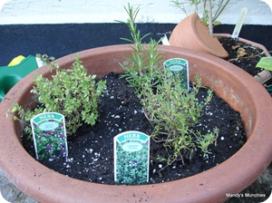 Rosemary and Thyme 11 Aug