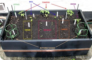 Allplanted1labelled_thumb