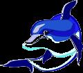 Dolphin_22