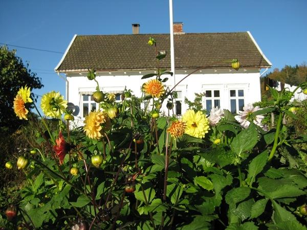2010-10-11 Hagen (6)