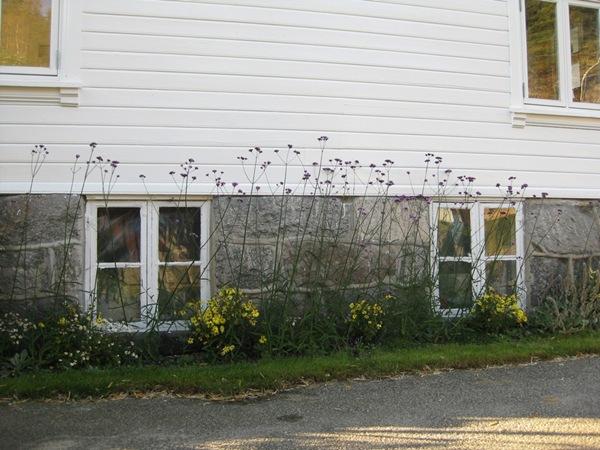 2010-10-16 Hagen (33)