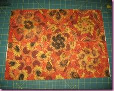Fall Quilt Swap 2009 003