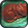 Nessled Sleeping Mouse