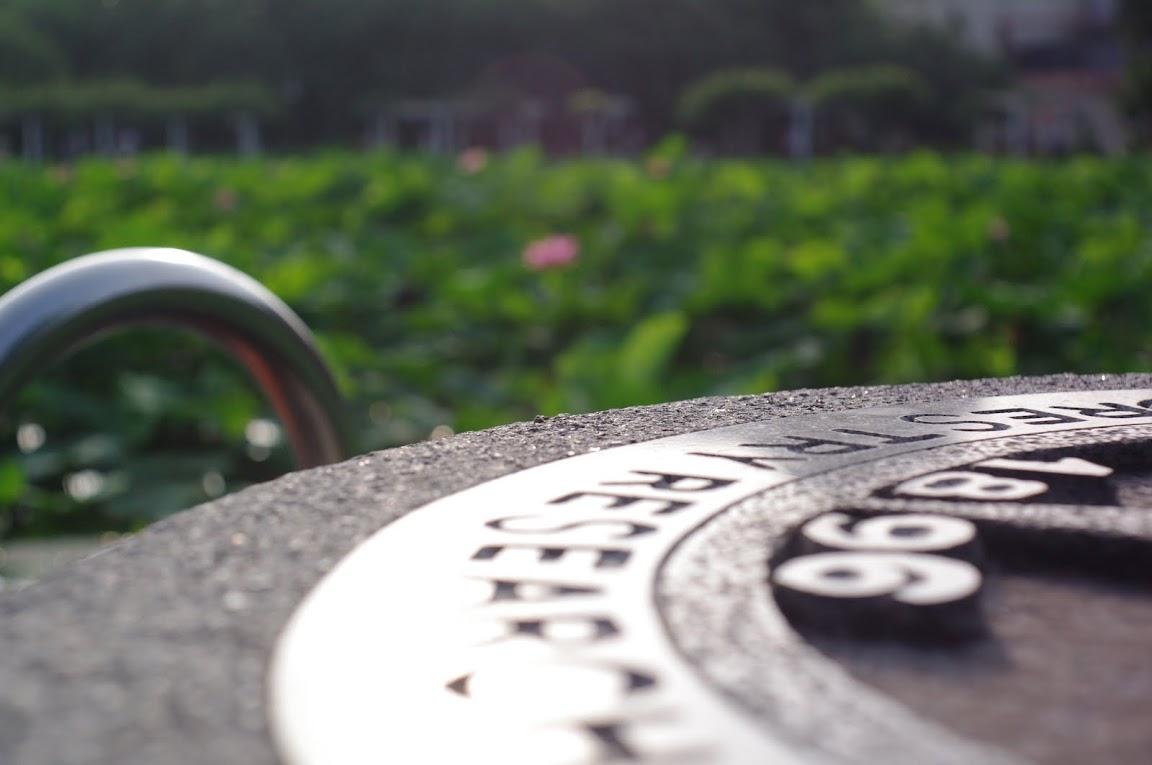 0609 清晨六點的植物園Orz