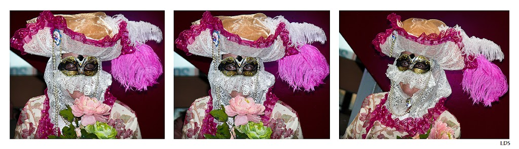 Sortie au Carnaval Vénitien d'Annecy 28/02 - Les Photos - Page 4 Triptyque_2_1