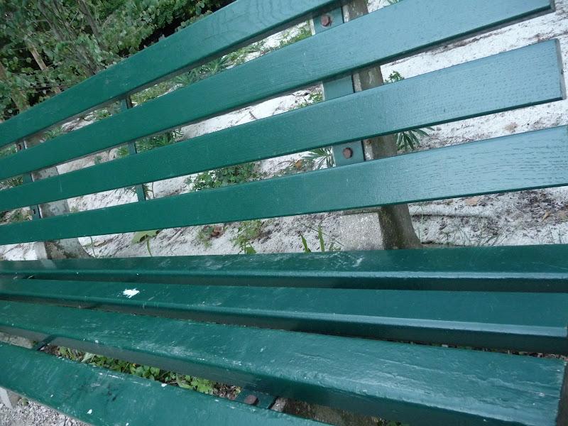 Rails dans le paysage... 2009_06_23__06_Rails_Banc_P1040825