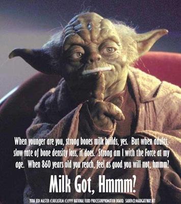 funny-yoda-picture-jedi-masters-got-milk-parody-pic