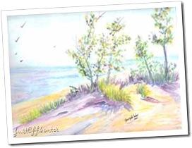 090512 Spring Dune 1sm
