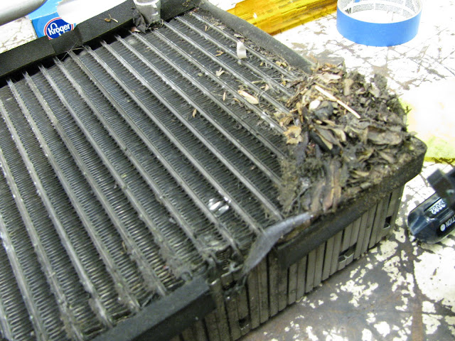 Ford focus evaporator replacements automotive air conditioning well it is done and out the door we got a good 40 degree drop in temperature and pressures looked good here are some pictures from along the way fandeluxe Choice Image