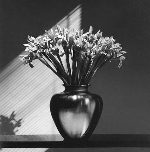 RobertMapplethorpe vaso