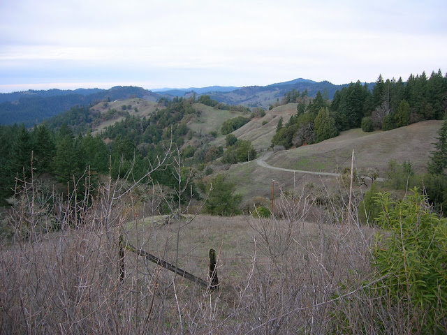Views from the Orr Springs Road on the way to Ukiah